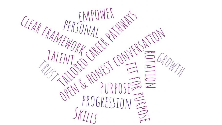 DSPM Community Meeting Word Cloud: empower, personal, tailored career pathways, open & honest conversation, clear framework, talent, trust, purpose, progression, skills, fit for purpose, rotation, growth
